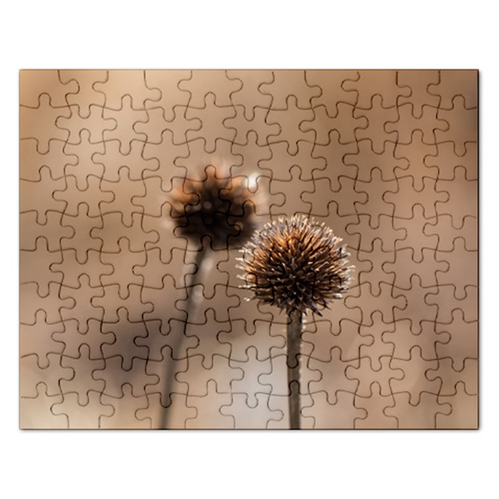 Withered Globe Thistle In Autumn Macro Rectangular Jigsaw Puzzl