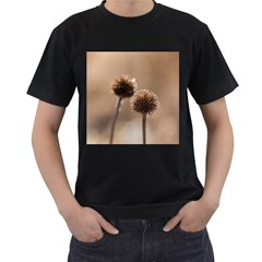 Withered Globe Thistle In Autumn Macro Men s T Shirt (black) (two Sided)