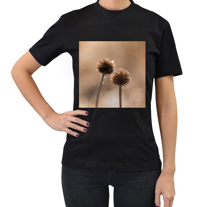 Withered Globe Thistle In Autumn Macro Women s T-Shirt (Black) (Two Sided)