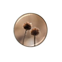 Withered Globe Thistle In Autumn Macro Hat Clip Ball Marker by wsfcow