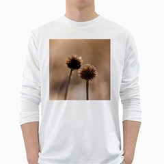 Withered Globe Thistle In Autumn Macro White Long Sleeve T Shirts