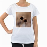Withered Globe Thistle In Autumn Macro Women s Loose-Fit T-Shirt (White)