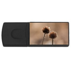 Withered Globe Thistle In Autumn Macro USB Flash Drive Rectangular (4 GB)