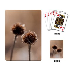 Withered Globe Thistle In Autumn Macro Playing Card by wsfcow