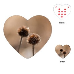 Withered Globe Thistle In Autumn Macro Playing Cards (heart)