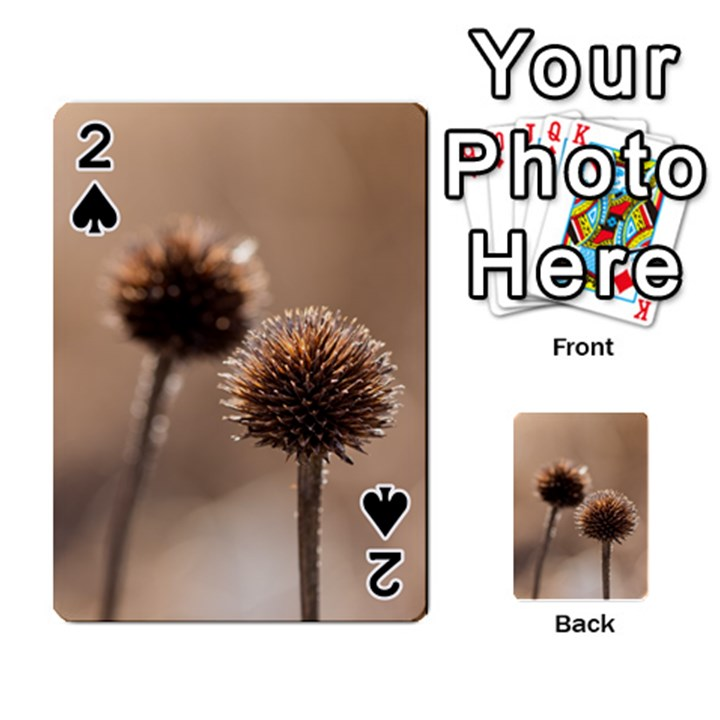 Withered Globe Thistle In Autumn Macro Playing Cards 54 Designs