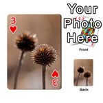 Withered Globe Thistle In Autumn Macro Playing Cards 54 Designs  Front - Heart3