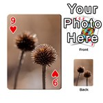 Withered Globe Thistle In Autumn Macro Playing Cards 54 Designs  Front - Heart9