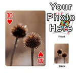 Withered Globe Thistle In Autumn Macro Playing Cards 54 Designs  Front - Heart10