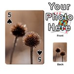 Withered Globe Thistle In Autumn Macro Playing Cards 54 Designs  Front - Spade5