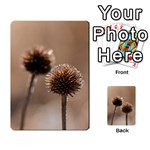 Withered Globe Thistle In Autumn Macro Playing Cards 54 Designs  Back