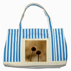 Withered Globe Thistle In Autumn Macro Striped Blue Tote Bag