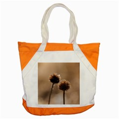 Withered Globe Thistle In Autumn Macro Accent Tote Bag by wsfcow