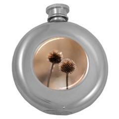 Withered Globe Thistle In Autumn Macro Round Hip Flask (5 Oz)