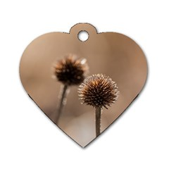 Withered Globe Thistle In Autumn Macro Dog Tag Heart (two Sides) by wsfcow