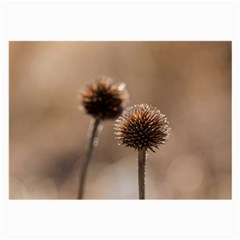 Withered Globe Thistle In Autumn Macro Large Glasses Cloth by wsfcow