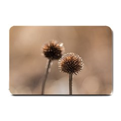 Withered Globe Thistle In Autumn Macro Small Doormat