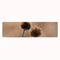 Withered Globe Thistle In Autumn Macro Large Bar Mats by wsfcow