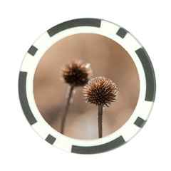 Withered Globe Thistle In Autumn Macro Poker Chip Card Guards by wsfcow