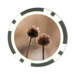 Withered Globe Thistle In Autumn Macro Poker Chip Card Guards Back