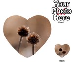 Withered Globe Thistle In Autumn Macro Multi-purpose Cards (Heart)  Back 2