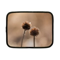 Withered Globe Thistle In Autumn Macro Netbook Case (small)  by wsfcow
