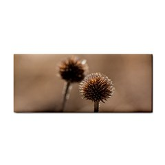 Withered Globe Thistle In Autumn Macro Hand Towel by wsfcow