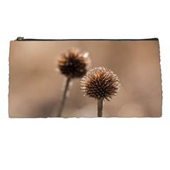 Withered Globe Thistle In Autumn Macro Pencil Cases by wsfcow