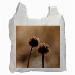Withered Globe Thistle In Autumn Macro Recycle Bag (one Side) by wsfcow