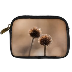 Withered Globe Thistle In Autumn Macro Digital Camera Cases by wsfcow