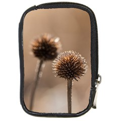 Withered Globe Thistle In Autumn Macro Compact Camera Cases by wsfcow