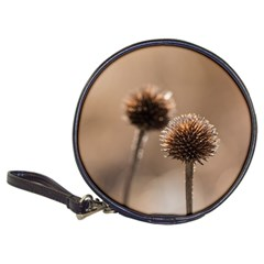 Withered Globe Thistle In Autumn Macro Classic 20 Cd Wallets
