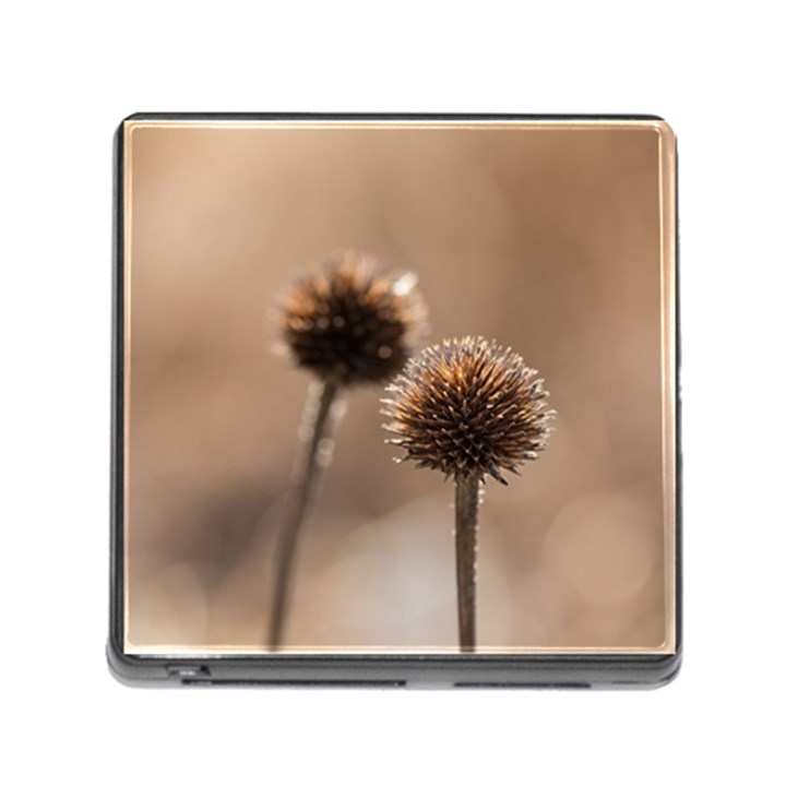 Withered Globe Thistle In Autumn Macro Memory Card Reader (Square)