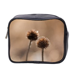 Withered Globe Thistle In Autumn Macro Mini Toiletries Bag 2 Side