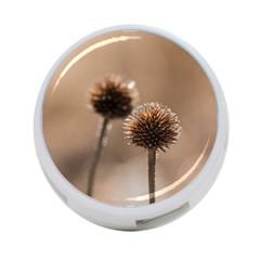 Withered Globe Thistle In Autumn Macro 4 Port Usb Hub (one Side)