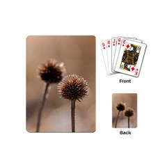 Withered Globe Thistle In Autumn Macro Playing Cards (mini)