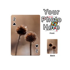 Withered Globe Thistle In Autumn Macro Playing Cards 54 (mini)  by wsfcow