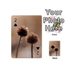 Withered Globe Thistle In Autumn Macro Playing Cards 54 (Mini)