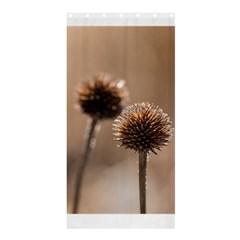 Withered Globe Thistle In Autumn Macro Shower Curtain 36  X 72  (stall)