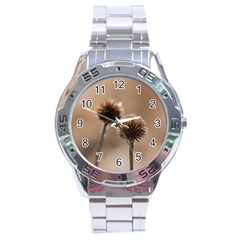 Withered Globe Thistle In Autumn Macro Stainless Steel Analogue Watch