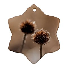 Withered Globe Thistle In Autumn Macro Snowflake Ornament (2 Side)