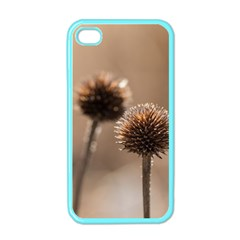 Withered Globe Thistle In Autumn Macro Apple Iphone 4 Case (color) by wsfcow