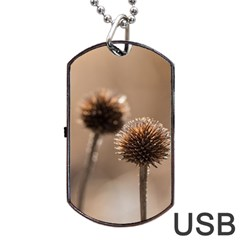 Withered Globe Thistle In Autumn Macro Dog Tag Usb Flash (one Side) by wsfcow