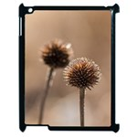 Withered Globe Thistle In Autumn Macro Apple iPad 2 Case (Black) Front