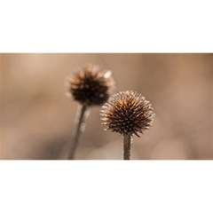 Withered Globe Thistle In Autumn Macro You Are Invited 3d Greeting Card (8x4) by wsfcow