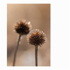 Withered Globe Thistle In Autumn Macro Small Garden Flag (two Sides)