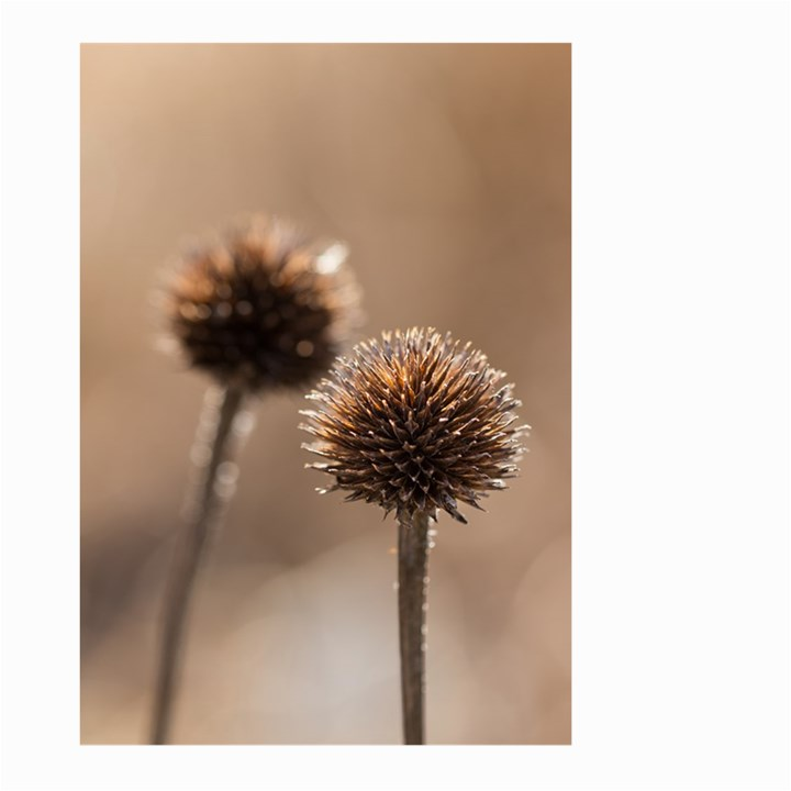 Withered Globe Thistle In Autumn Macro Large Garden Flag (Two Sides)