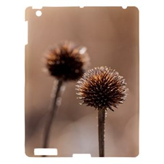 Withered Globe Thistle In Autumn Macro Apple Ipad 3/4 Hardshell Case by wsfcow