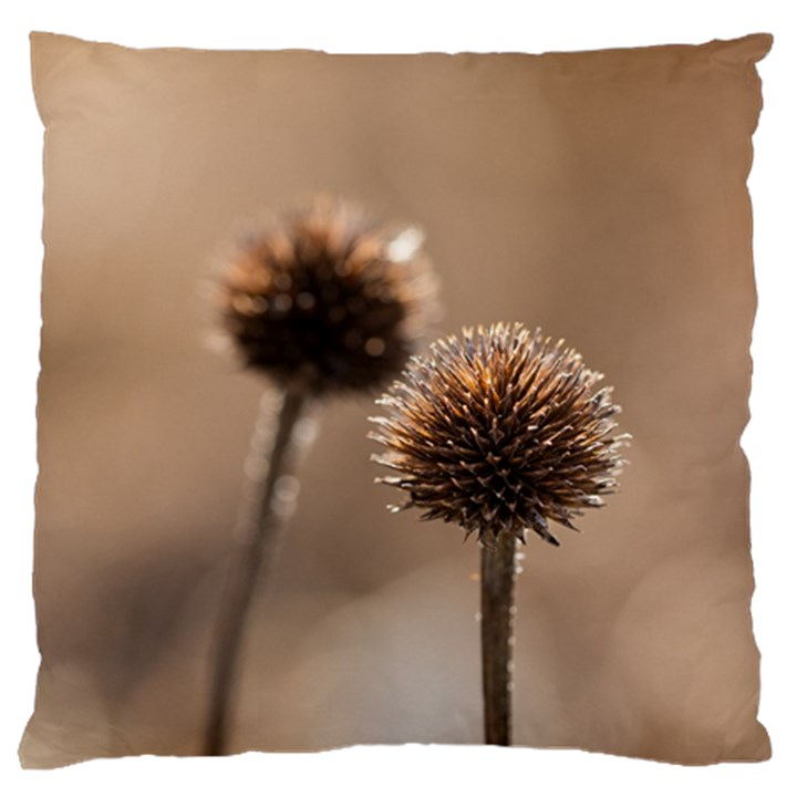 Withered Globe Thistle In Autumn Macro Large Cushion Case (One Side)