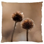Withered Globe Thistle In Autumn Macro Large Cushion Case (Two Sides)